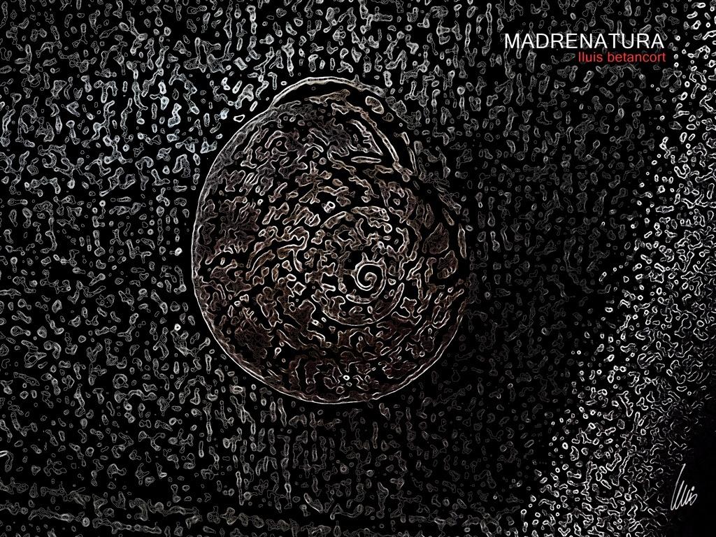 caracola en espiral foto retoke lluis betancort 2017
