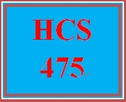 HCS 475 Week 3 Effective Work Group Presentation