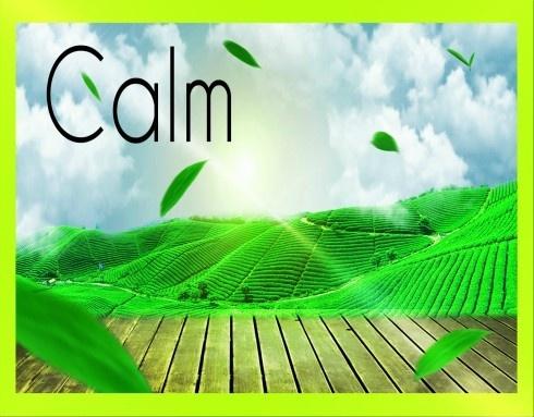 Musica Rilassante Per Calmare La Mente