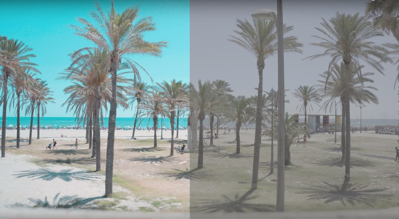 Slog3 Summer LUT 3 by CameraFrames