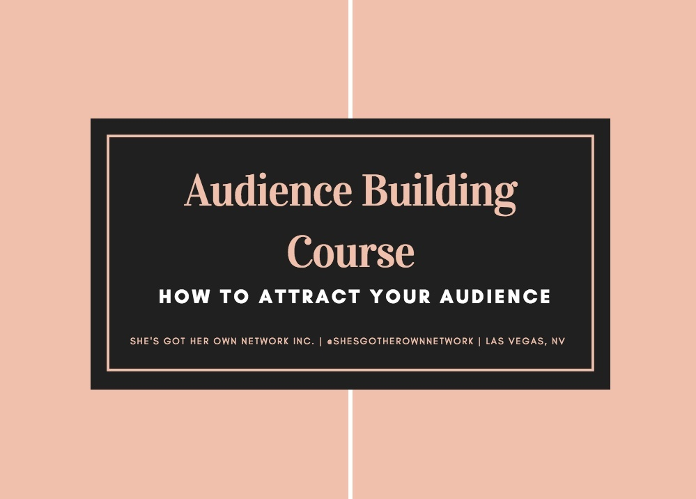 Attracting Your Audience 101 - For Beginners - Audio Course