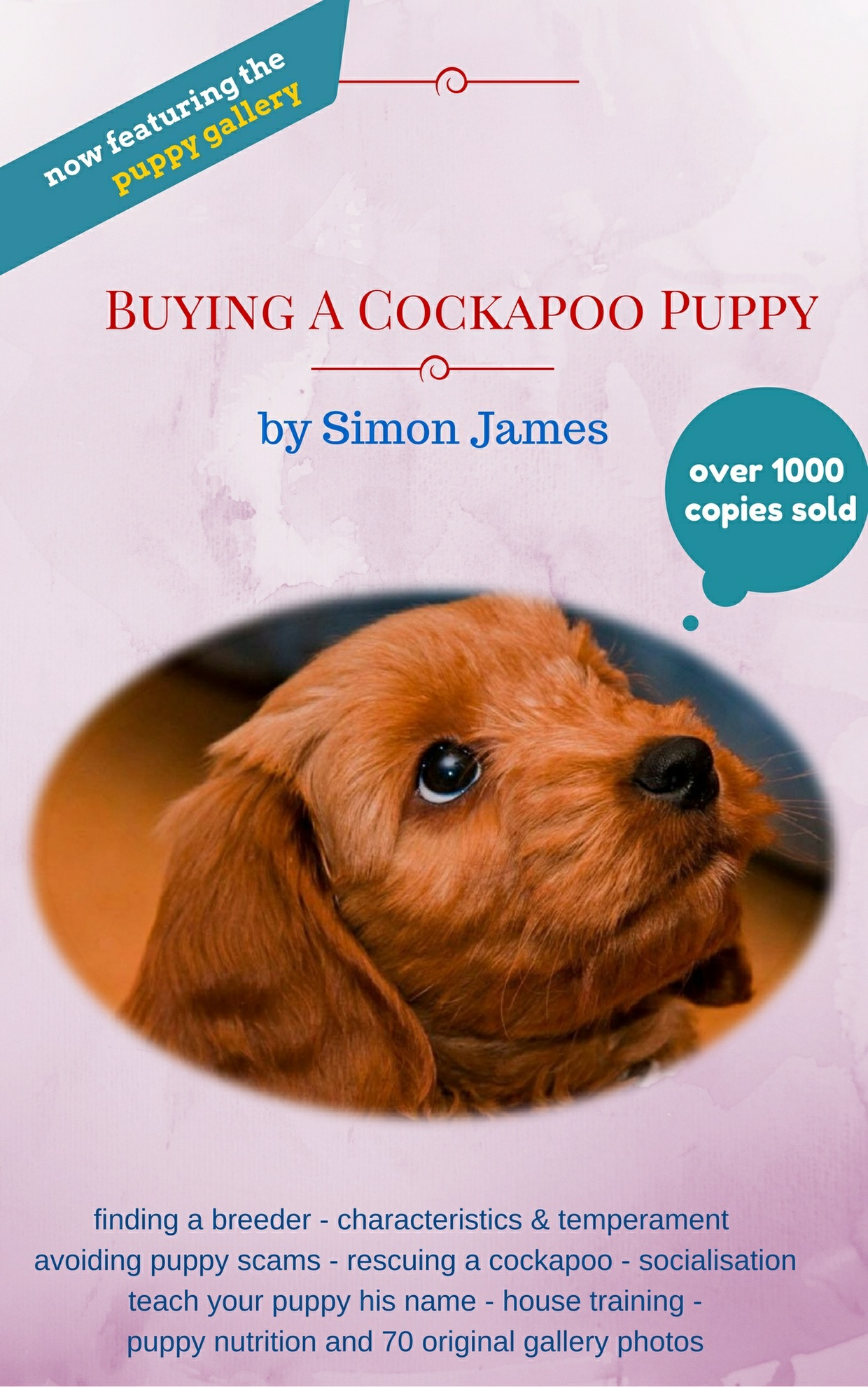 The Big Cockapoo Bundle - 4 Books In One