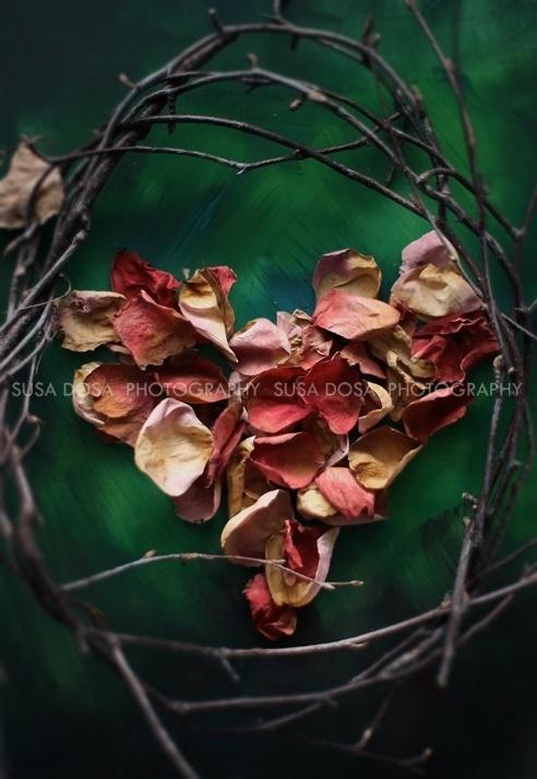 - Rose Petals & heart -