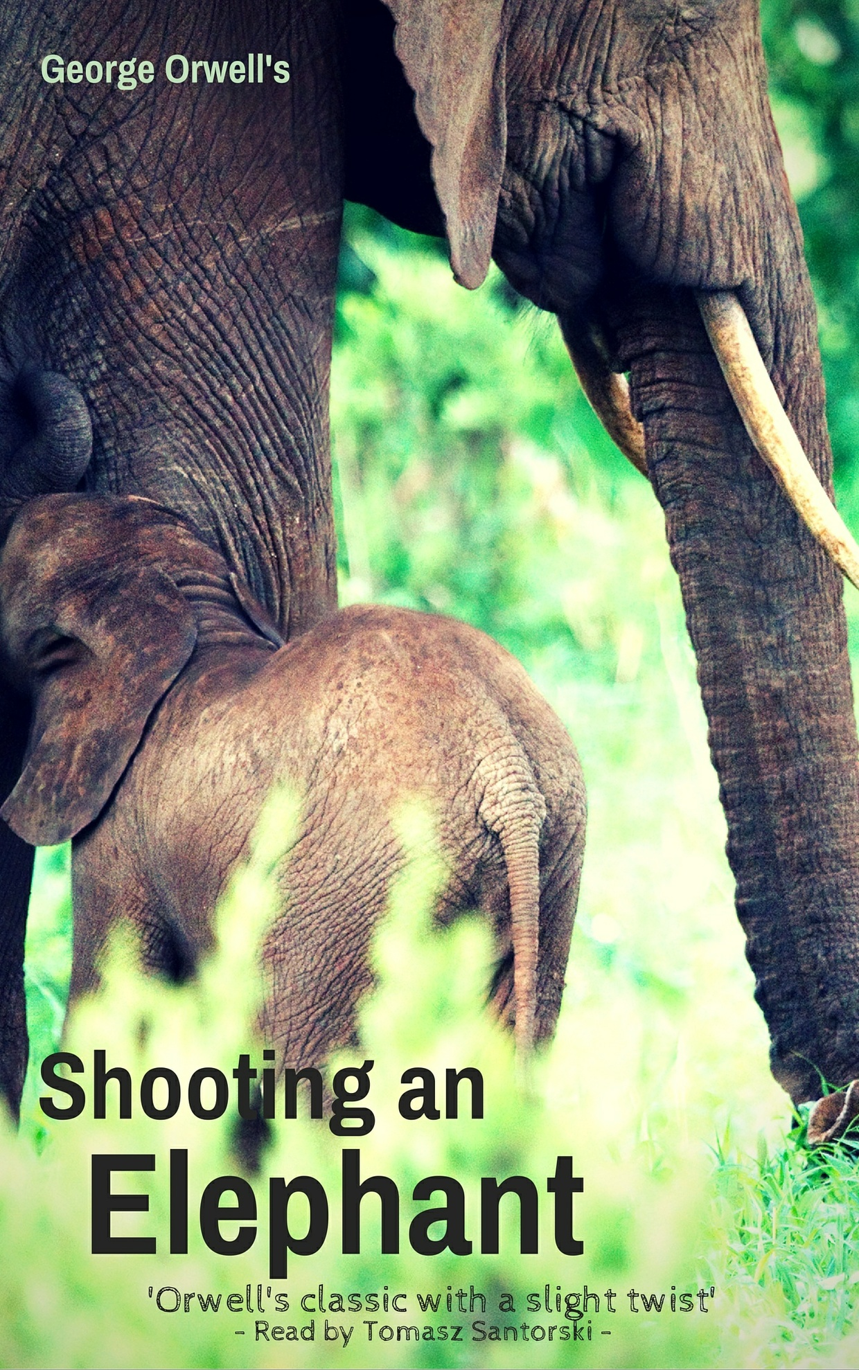 an analysis of tyranny in shooting an elephant by george orwell