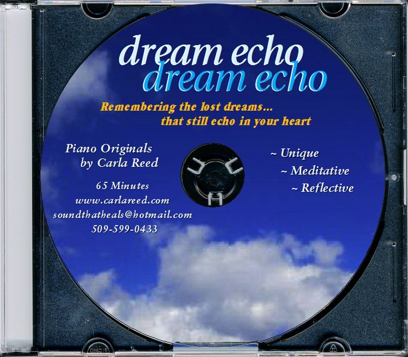 Dream Echo