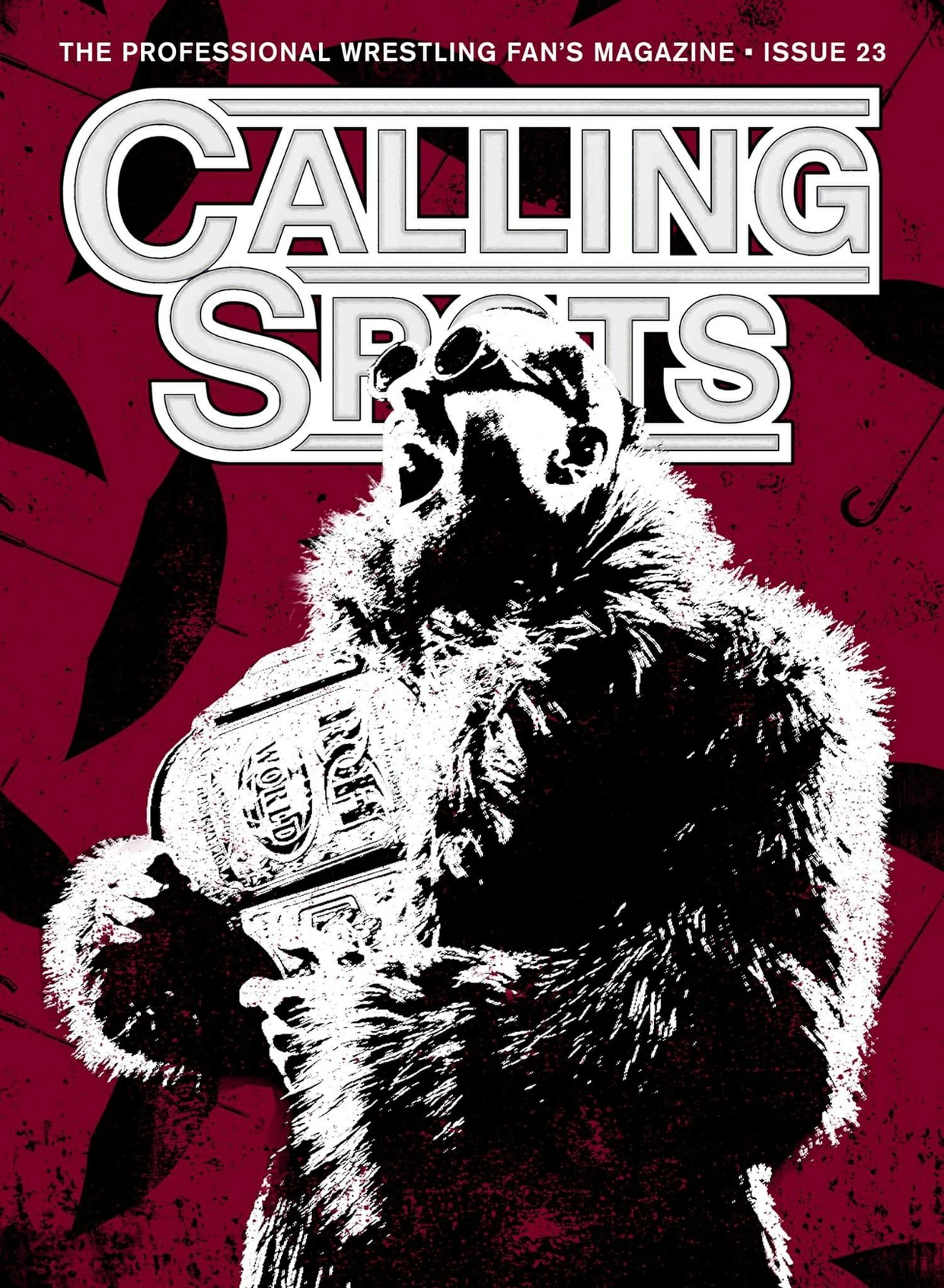 Calling Spots issue 23