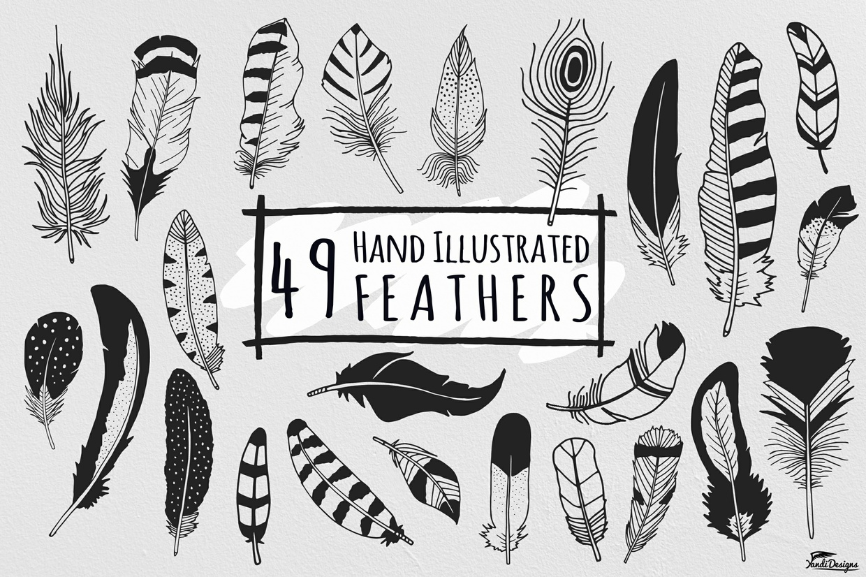 Hand Illustrated Feathers - PWYW