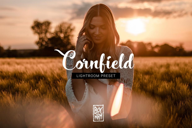 Cornfield ╳ Lightroom Preset