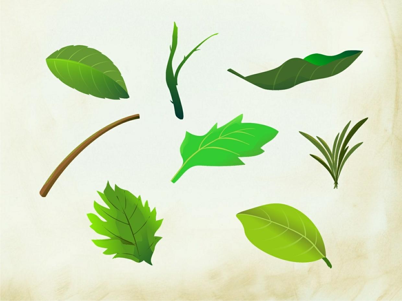 Leaves Scrapbook Elements  (25 png images)