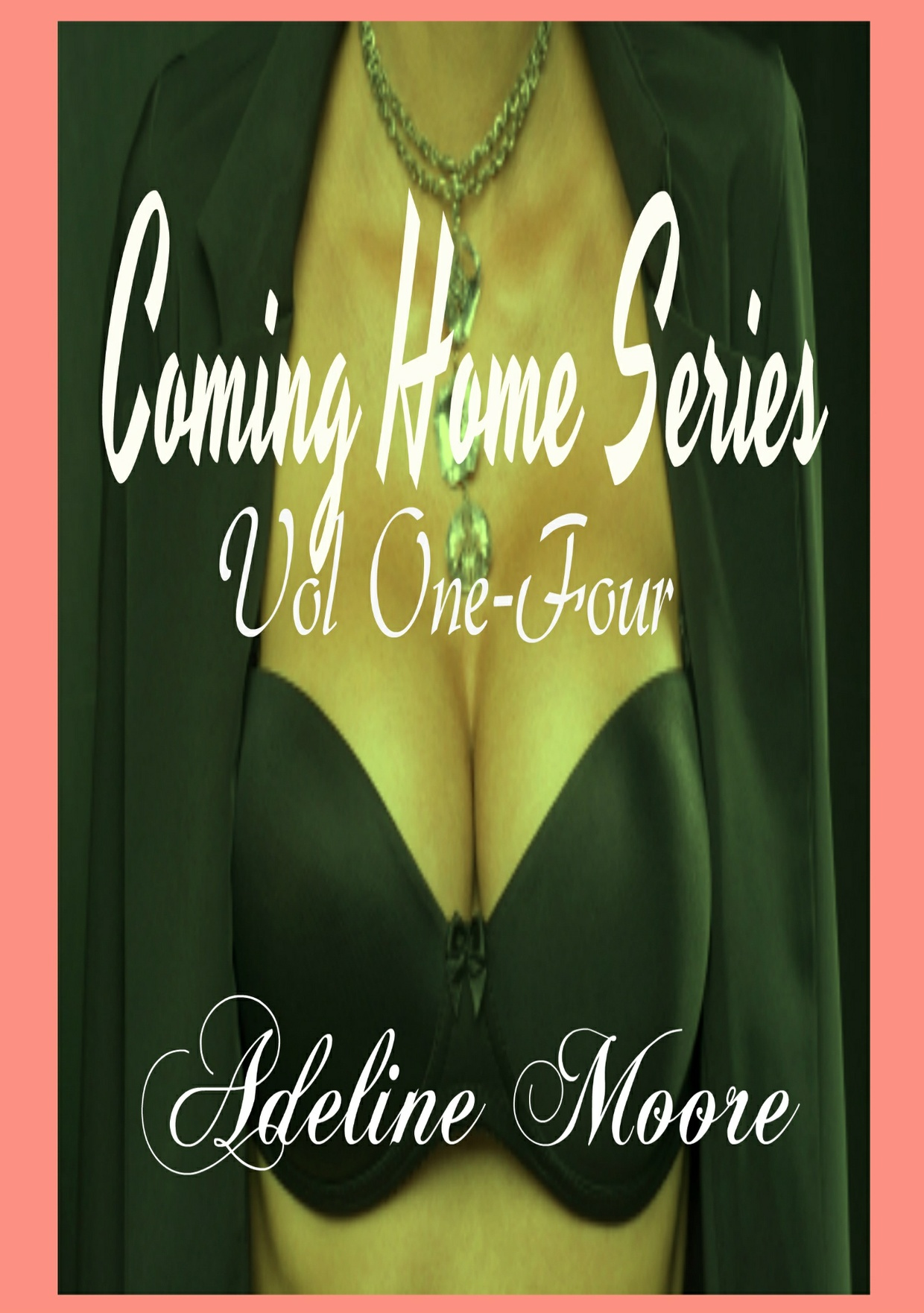 Coming Home Series Vol. one - four