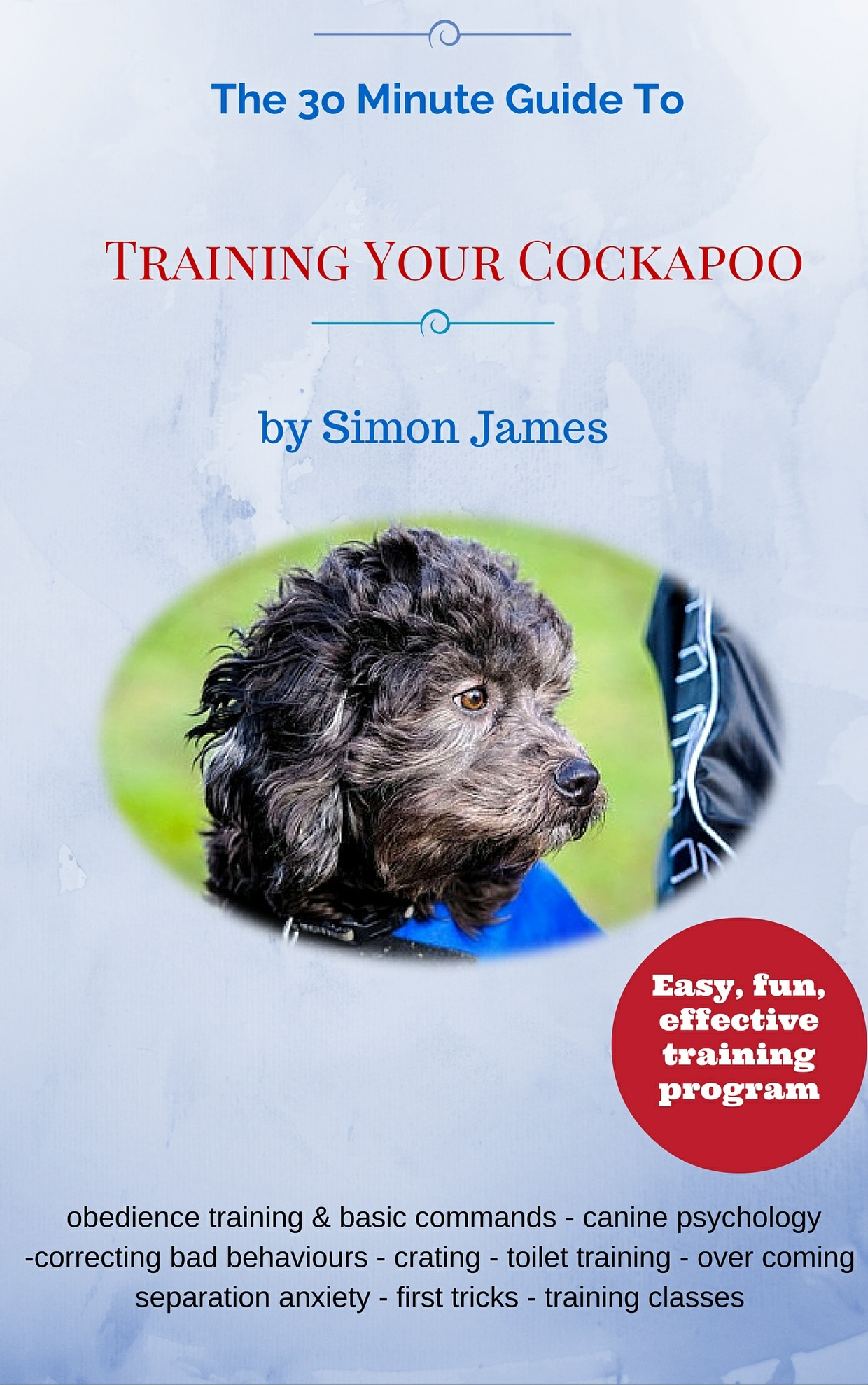 The 30 Minute Guide To Training Your Cockapoo