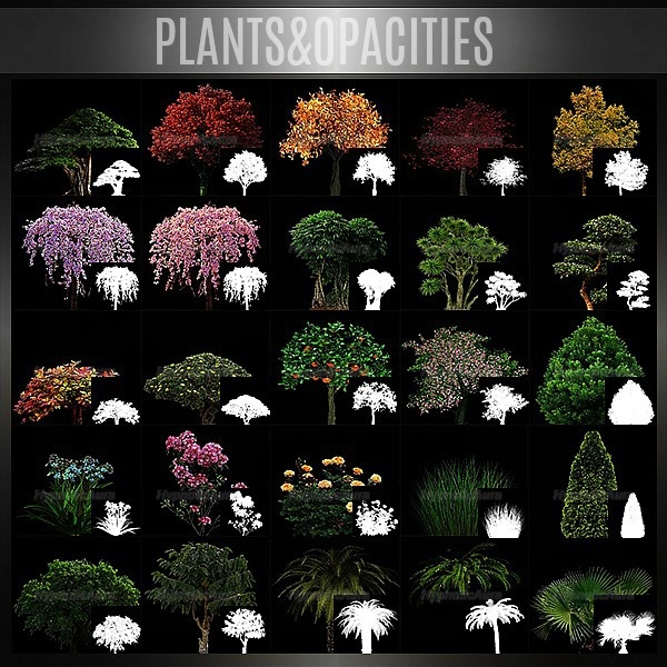 A~PLANTS&OPACITIES 120 TEXTURES