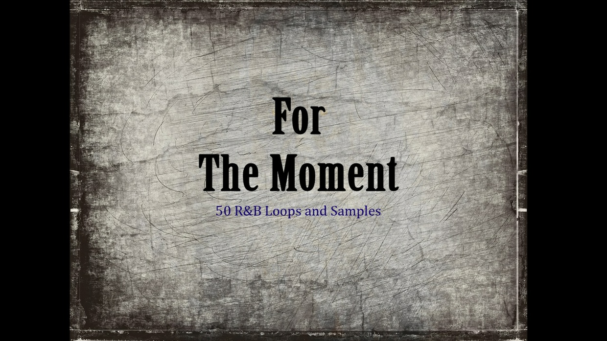 """""""For The Moment"""" Loops And Samples"""