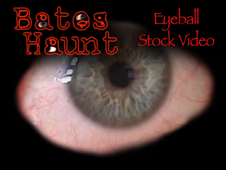 BatesHaunt Eyeball Stock Video