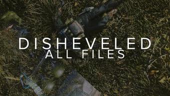 DISHEVELED - All Files
