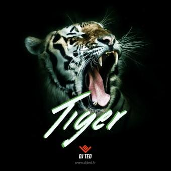 TIGER 135.141 BPM