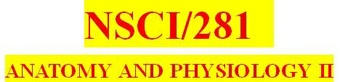 NSCI 281 Week 7 Final Examination