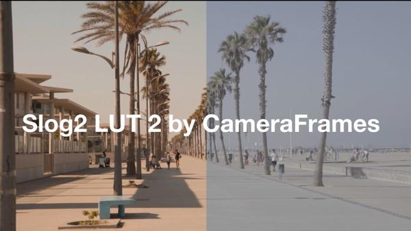 Slog2 SUMMER LUT 2 by CameraFrames