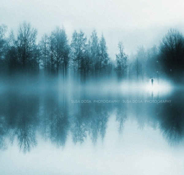 Foggy Blue Winter scene