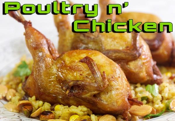Poultry Chapter فصل الدجاج والطيور