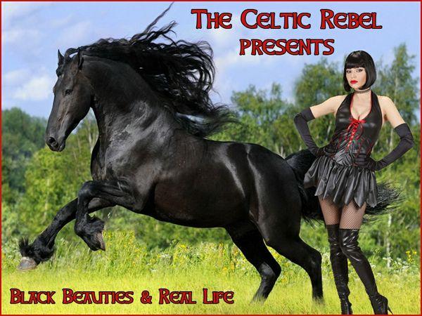 Black Beauties & Real Life (Apr 2013)