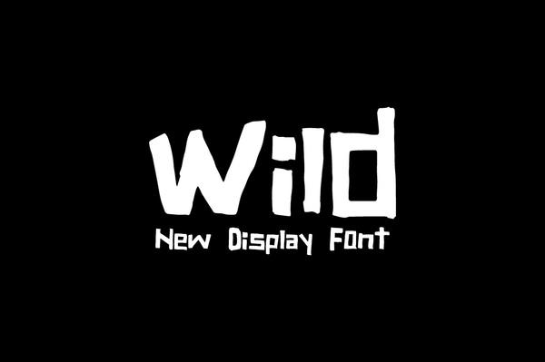 Wild — NEW display font®