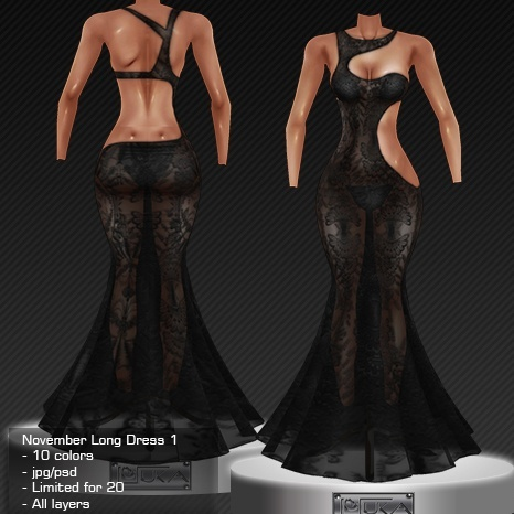 2013 Nov Long Dress # 1