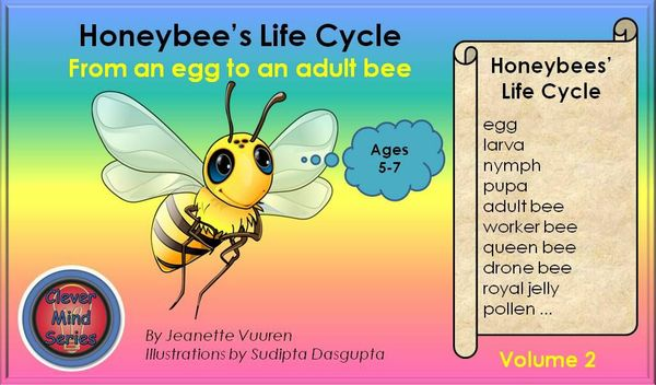 HONEYBEE FACTS: HONEYBEE'S LIFE CYCLE VOLUME 2 JEANETTE VUUREN