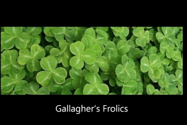 138-GALLAGHER'S FROLIC 34S