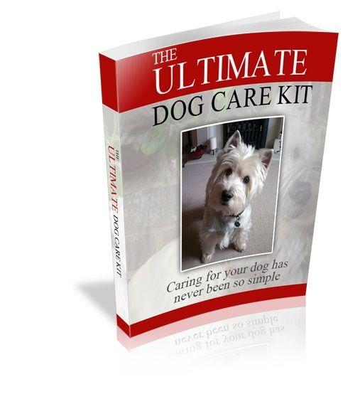 Ultimate Dog Care Kit