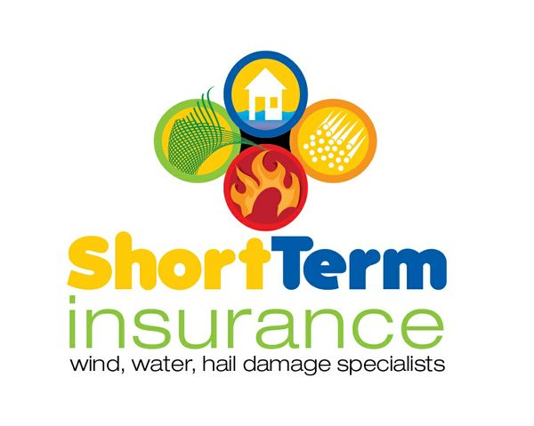 Short Term Insurance logo