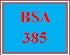 BSA 385 Week 4 Week Four Learning Team: Weekly Team Log/Summary