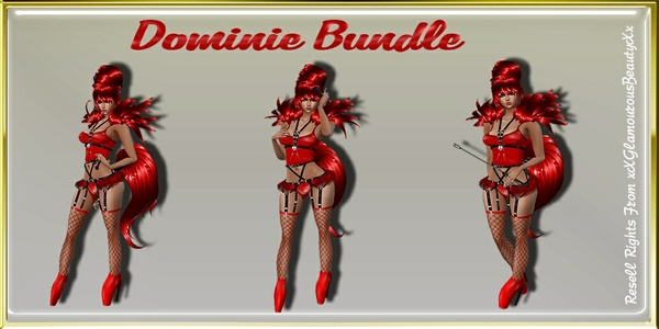 Dominie BDSM Bundle Master Resell Rights!!!