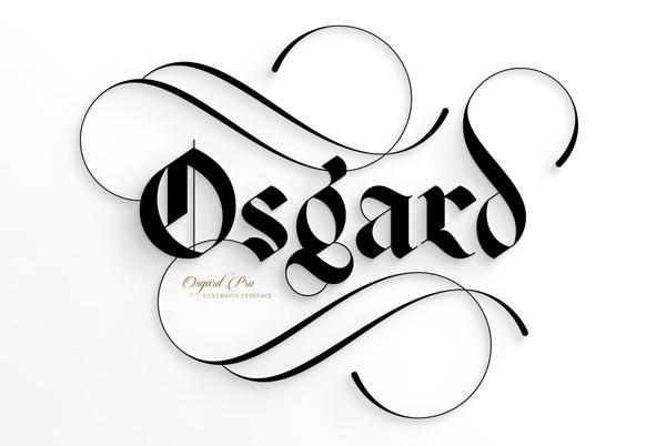 Osgard Pro