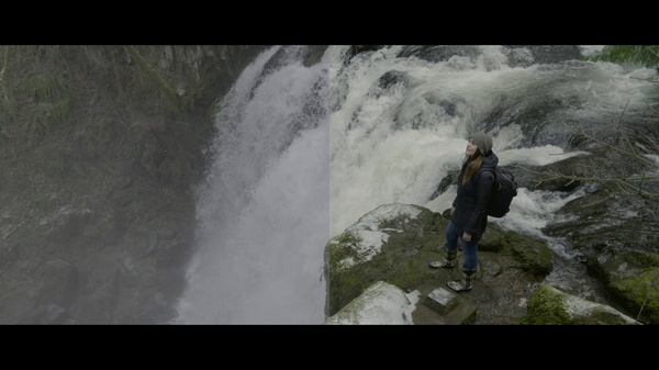FREE V-Log L Flattened Out LUT