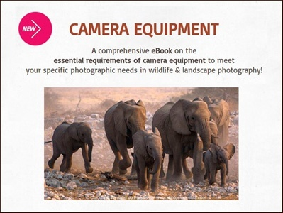 The essential requirements of camera equipment for wildlife & landscape photography in Africa