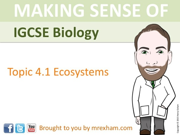 IGCSE Biology - Ecosystems Presentation