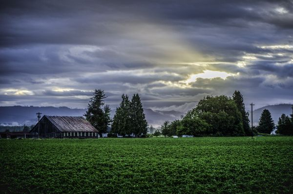 Sunlight Farm