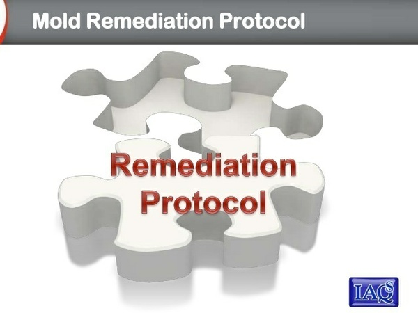 Mold Remediation Specifications Protocol Writing Course