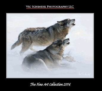 2016 Fine Art Catalog - Vic Schendel