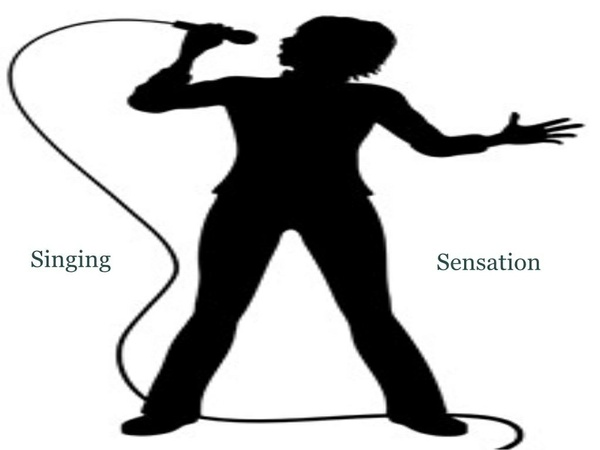 Singing Sensation MP3