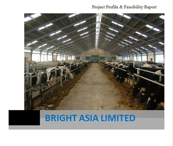 project profile of auto rice mill A project report on setting up rice bran oil processing plant has been released by imarc group factors such as market size, industry trends, key players, raw.
