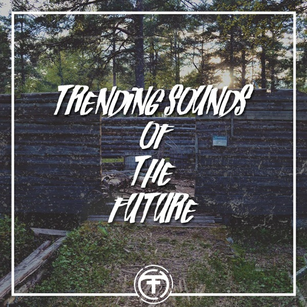 Tiik Sounds : Trending Sounds Of The Future (Serum Presets)(Standard Edition)