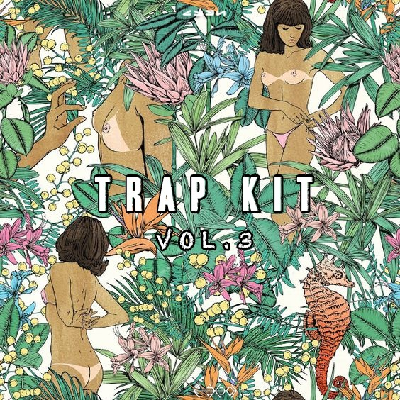 C Y G N TRAP KIT VOL.3