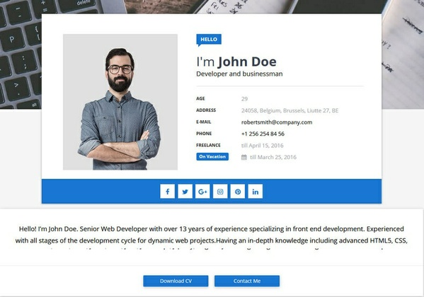 Sora CV Blogger Template Premium Version