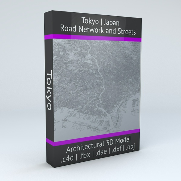 Tokyo Road Network Architectural 3D Model