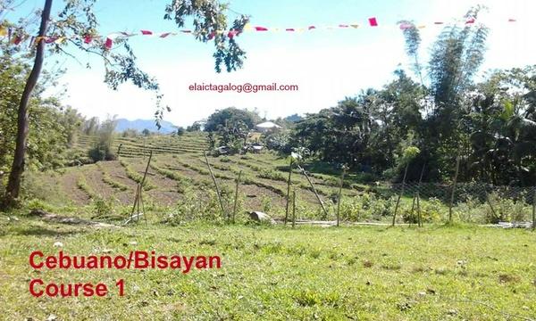 Cebuano /Bisayan L 8 Road and wall signs