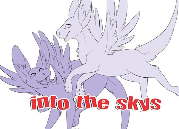 Into the Skys