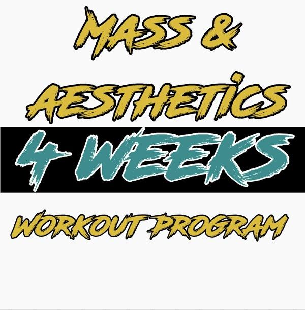 Mass & Aesthetics Volume 1 (4 weeks) Introduction