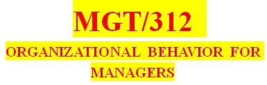 MGT 312 Week 5 Leveraging Organizational Behavior and Management to Maximize Business Success